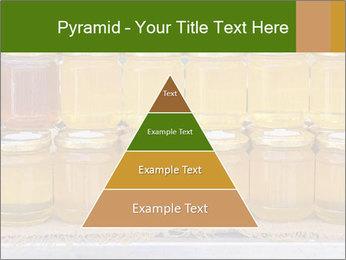 0000077874 PowerPoint Template - Slide 30
