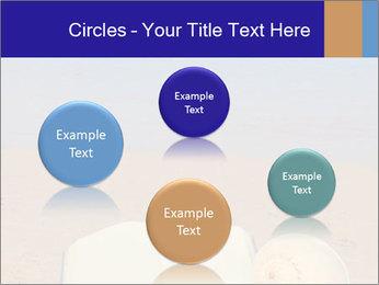0000077876 PowerPoint Templates - Slide 77