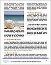 0000077876 Word Templates - Page 4