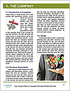 0000077880 Word Template - Page 3