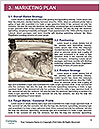 0000077881 Word Templates - Page 8