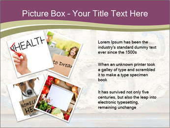 0000077905 PowerPoint Templates - Slide 23