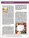 0000077905 Word Template - Page 3