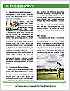 0000077910 Word Template - Page 3