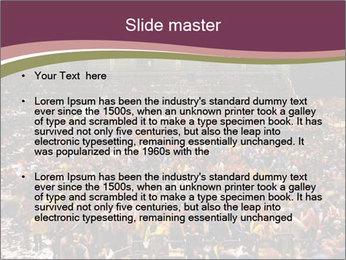 0000077911 PowerPoint Templates - Slide 2