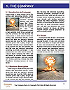 0000077913 Word Template - Page 3