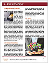 0000077914 Word Template - Page 3