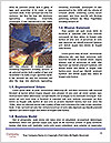 0000077915 Word Templates - Page 4