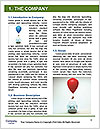 0000077920 Word Template - Page 3