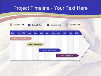 0000077921 PowerPoint Templates - Slide 25