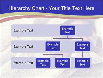 0000077921 PowerPoint Templates - Slide 67