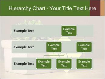0000077923 PowerPoint Templates - Slide 67