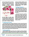 0000077925 Word Templates - Page 4