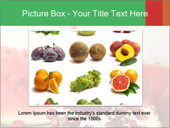 0000077932 PowerPoint Template - Slide 15