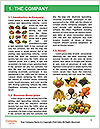 0000077932 Word Templates - Page 3