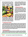 0000077932 Word Templates - Page 4