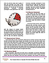 0000077933 Word Templates - Page 4