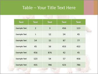 0000077941 PowerPoint Templates - Slide 55