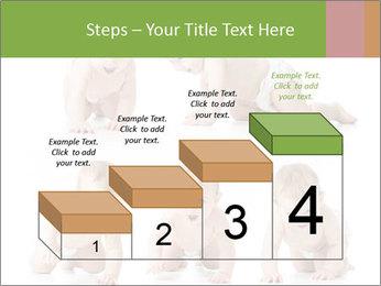 0000077941 PowerPoint Template - Slide 64