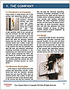 0000077944 Word Template - Page 3