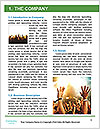 0000077945 Word Template - Page 3