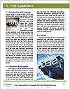 0000077969 Word Template - Page 3