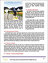 0000077977 Word Templates - Page 4