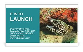 0000077980 Business Card Templates