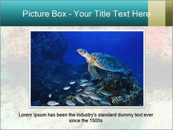0000077980 PowerPoint Templates - Slide 15