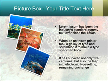 0000077980 PowerPoint Templates - Slide 17