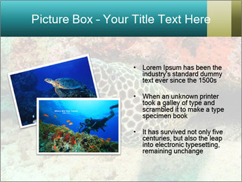 0000077980 PowerPoint Template - Slide 20