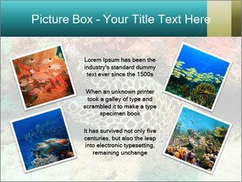 0000077980 PowerPoint Templates - Slide 24