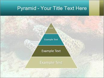 0000077980 PowerPoint Templates - Slide 30
