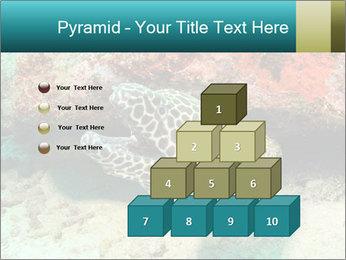 0000077980 PowerPoint Templates - Slide 31