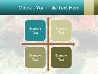 0000077980 PowerPoint Templates - Slide 37