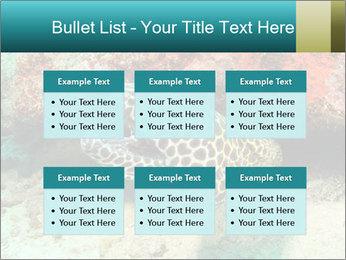 0000077980 PowerPoint Templates - Slide 56