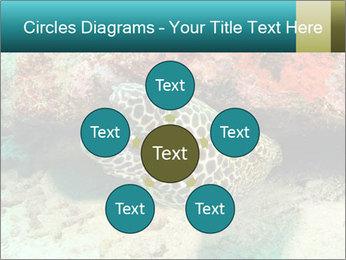 0000077980 PowerPoint Templates - Slide 78