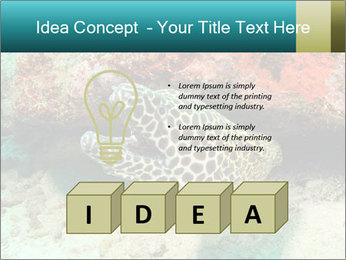 0000077980 PowerPoint Template - Slide 80