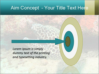 0000077980 PowerPoint Template - Slide 83