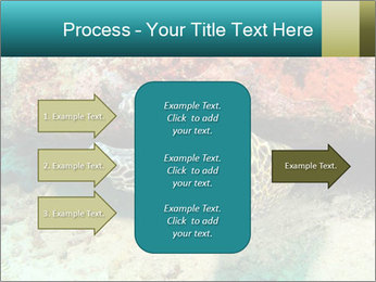 0000077980 PowerPoint Template - Slide 85