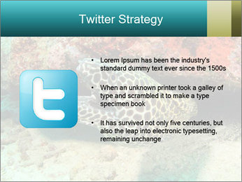 0000077980 PowerPoint Templates - Slide 9