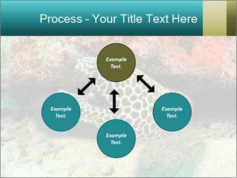 0000077980 PowerPoint Templates - Slide 91