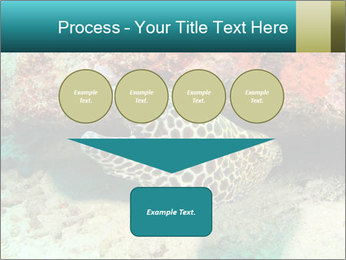 0000077980 PowerPoint Template - Slide 93