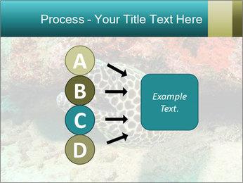 0000077980 PowerPoint Templates - Slide 94