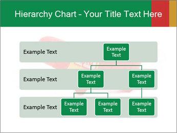 0000077983 PowerPoint Template - Slide 67