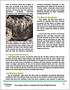 0000077985 Word Template - Page 4