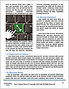 0000077986 Word Templates - Page 4