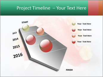 0000077987 PowerPoint Template - Slide 26