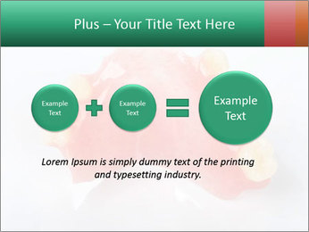 0000077987 PowerPoint Template - Slide 75