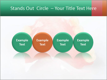 0000077987 PowerPoint Template - Slide 76